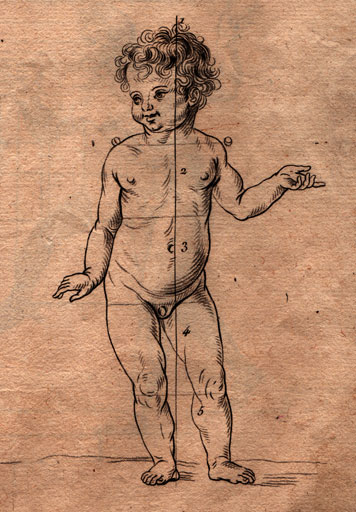 children drawing proportions